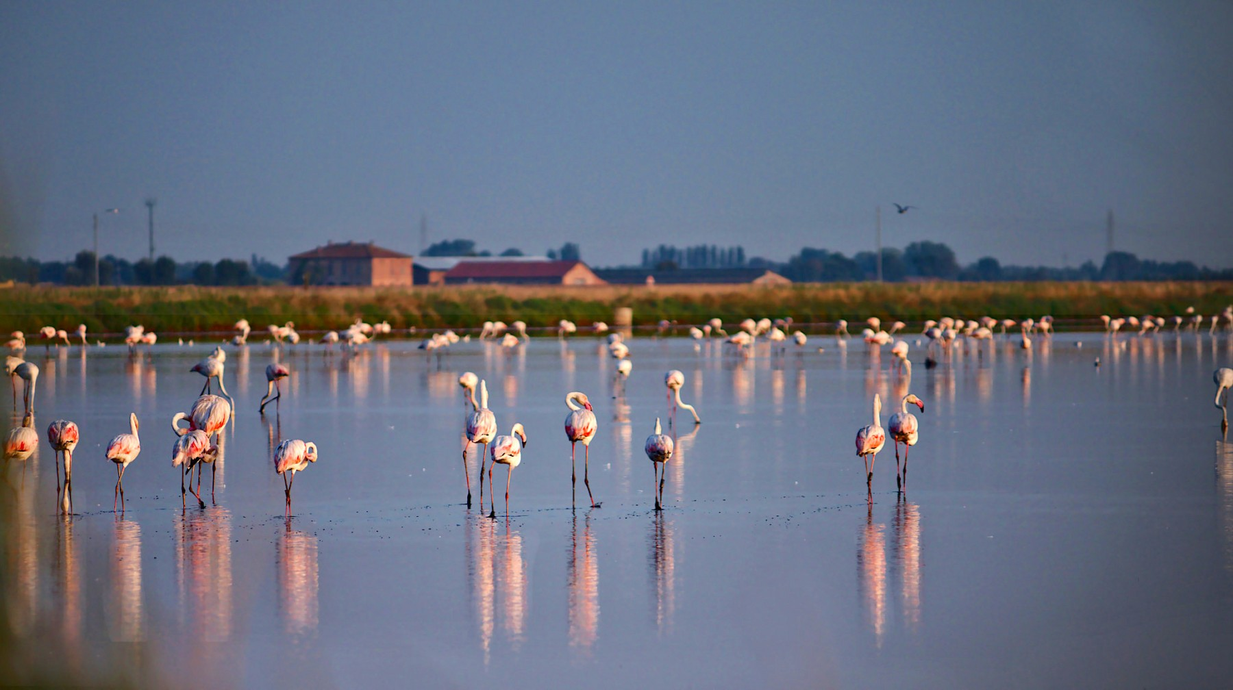 Le saline di Cervia | Foto by Massimo Briganti, via Flickr