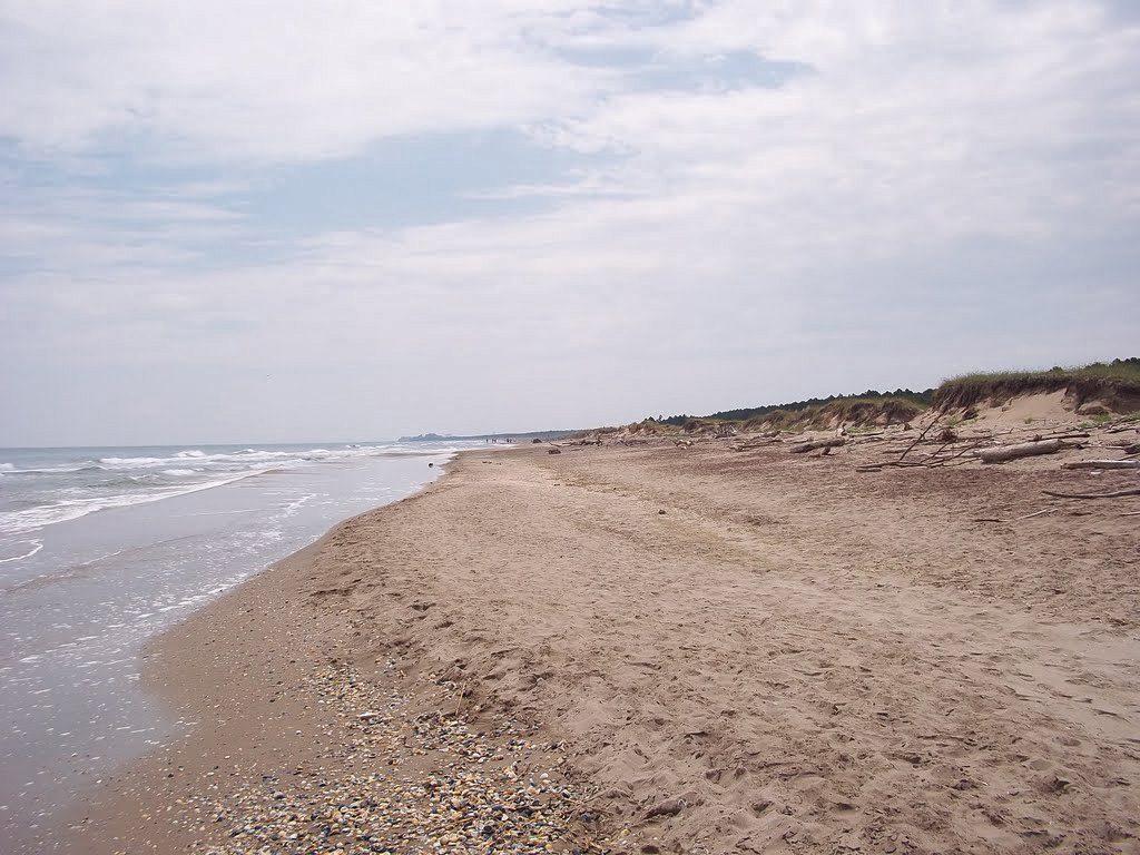 Spiaggia della Bassona_Ravenna