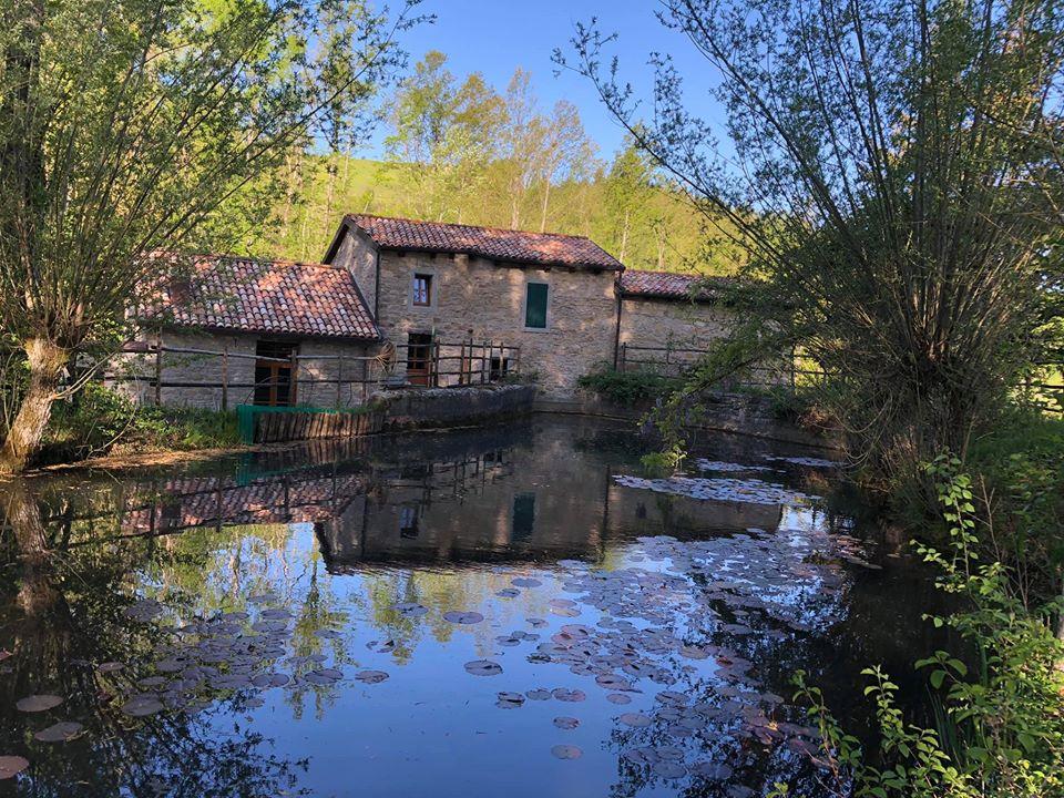 Mulino Mazzone a Piamaggio di Monghidoro Ph. Alessandra Antonelli via Iat Monghidoro