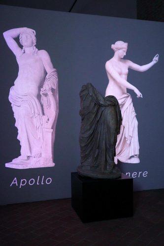 Piacenza, Museo Archeologico, Kleomenes, ph. Carlo Pagani, Archivio foto Comune di Piacenza