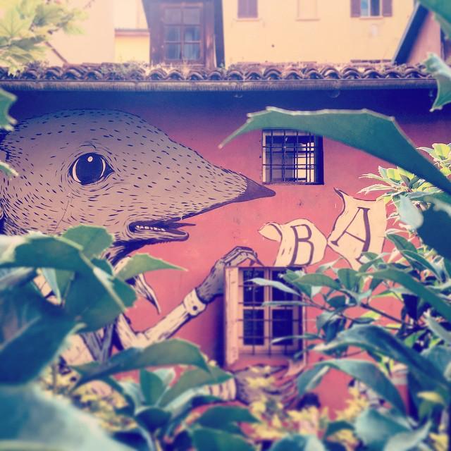 ViaEmiliaArt @gatta_mirta Bologna, Street Art in Via Capo di Lucca