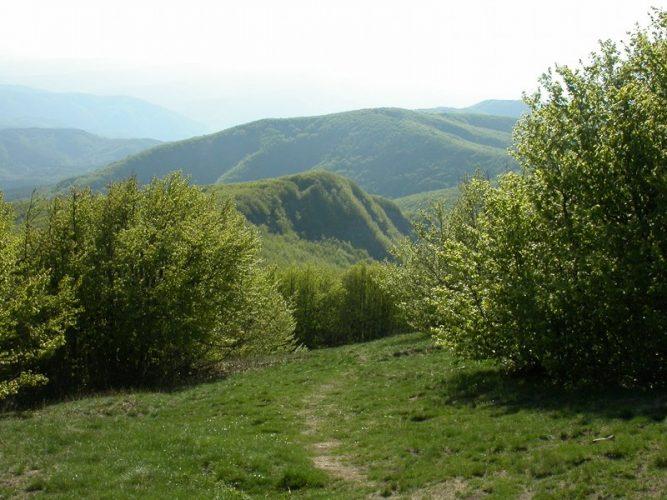 Vista da Monte Falco @Parks.it