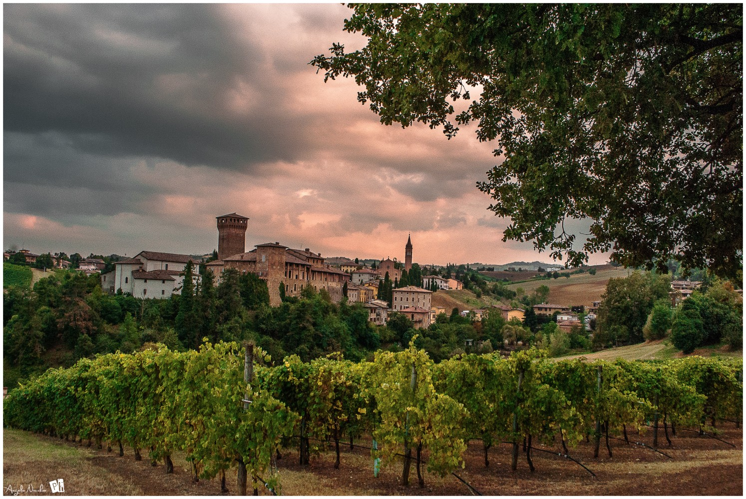 Castello di Levizzano, Castelvetro di Modena | Ph. Angelo Nacchio