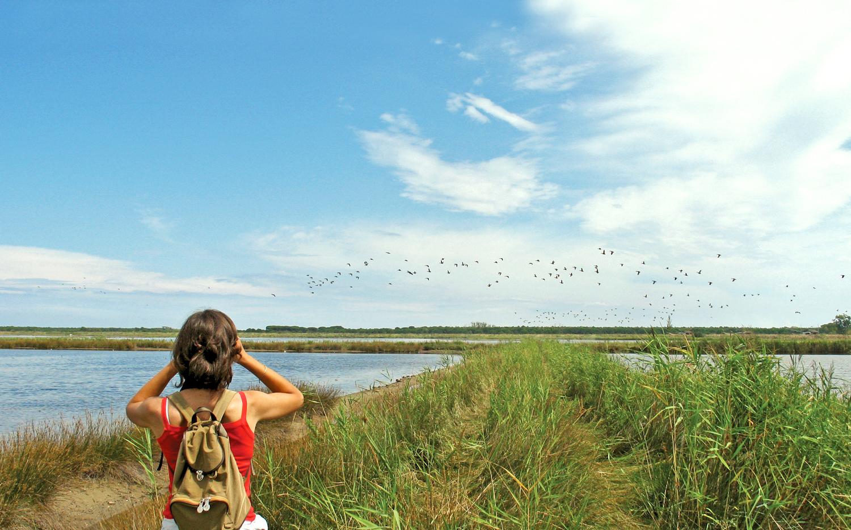 Birdwatching nel Parco del Delta del Po | Foto Archivio Comune di Ravenna