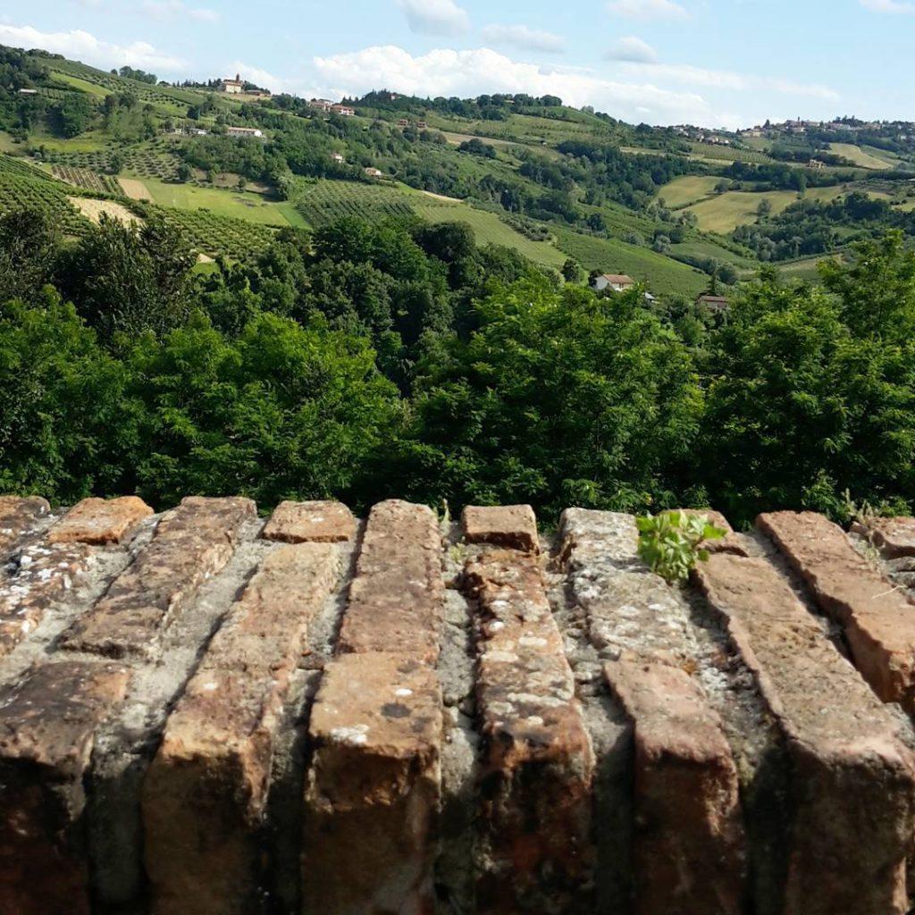 @fioredirlanda – Paesaggio di Longiano