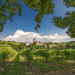 Castello di Levizzano in estate, Ph. Angelo Nastri Nacchio