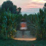 Labirinto Effimero, Alfonsine | Ph. @edizioninmagazine via Instagram