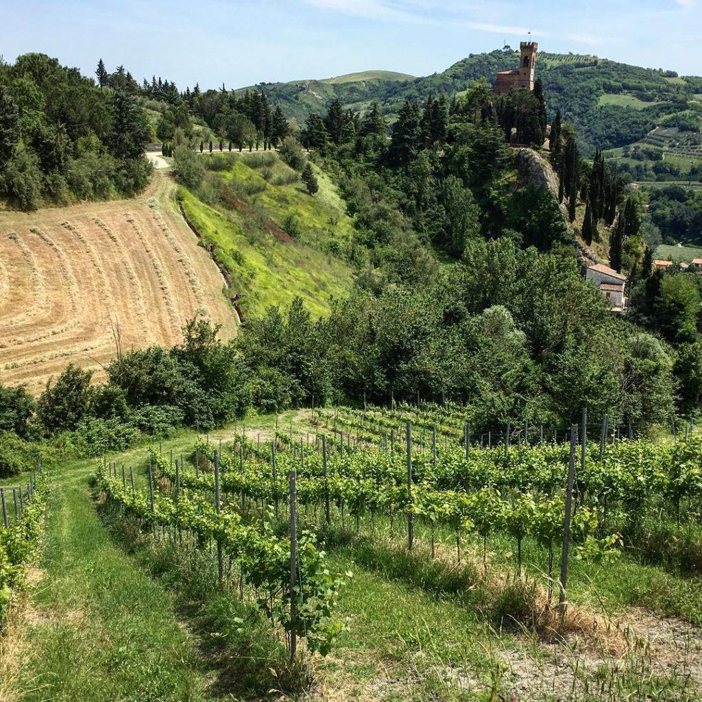 @vitaminabeta Romagna one love – Brisighella