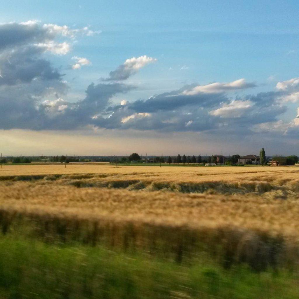 @Kappina87 – Campagne di Ozzano nell'Emilia
