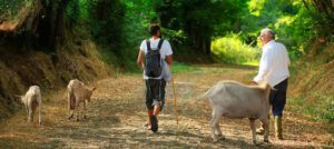 Cammini e Terme – Weekend tra natura e benessere