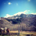 Maggiorasca Mount – Parma/Genova –@marcopolleri