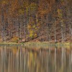 Autunno al Lago Pranda, Parco Appennino Tosco Emiliano | Ph. Carlo Alberto Conti WLE2019