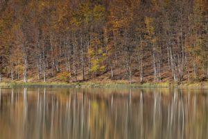 I colori dell'autunno in Emilia-Romagna