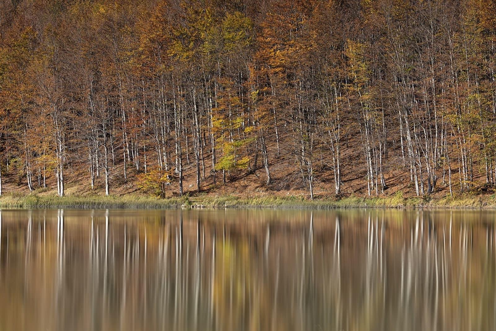 The autumn colours in Emilia-Romagna
