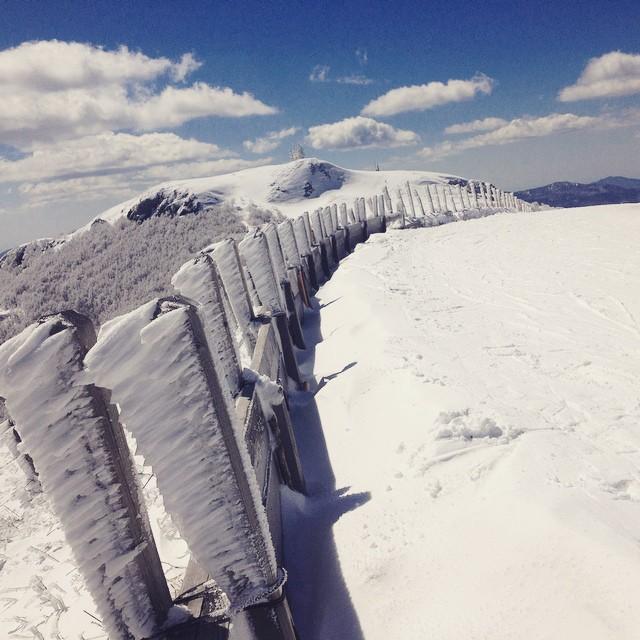 Bue Mount – Parma – @alice__mariani27