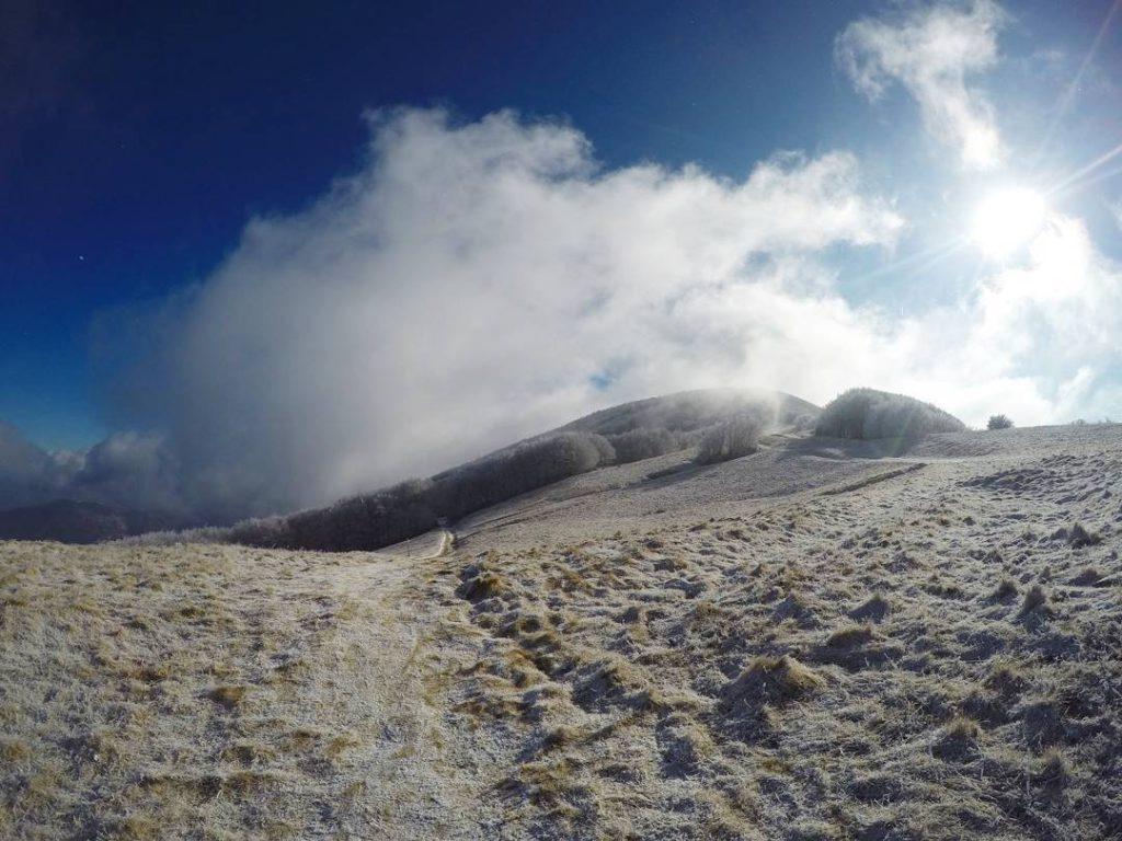 Falco Mount – Firenze/Arezzo/Forlì-Cesena – @ila2811