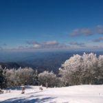 Falco Mount – Firenze/Arezzo/Forlì-Cesena –@enrybart