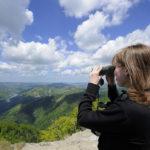 Parco Nazionale Foreste Casentinesi – Ph. F. Liverani via Parco delle Foreste Casentinesi