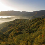 Autunno nel Parco – Ph. Giordano Giacomini via Parco Foreste Casentinesi