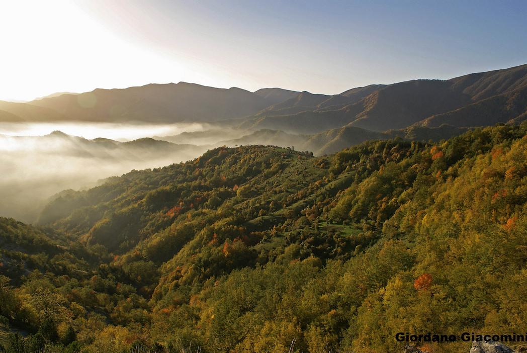 Il Parco delle Foreste Casentinesi e del Monte Falterona e Campigna