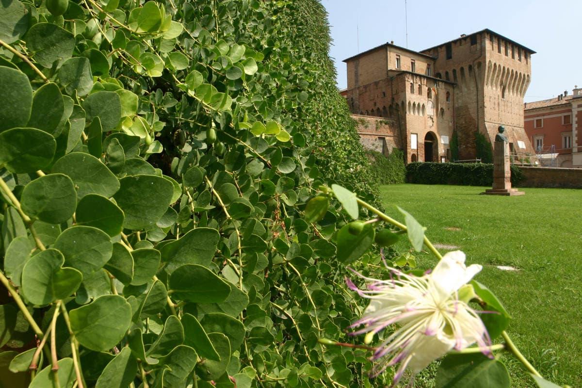 Lugo (RA), Capperi della Rocca, Archivio immagini BassaRomagnaMia, CC-BY-NC-SA3.0