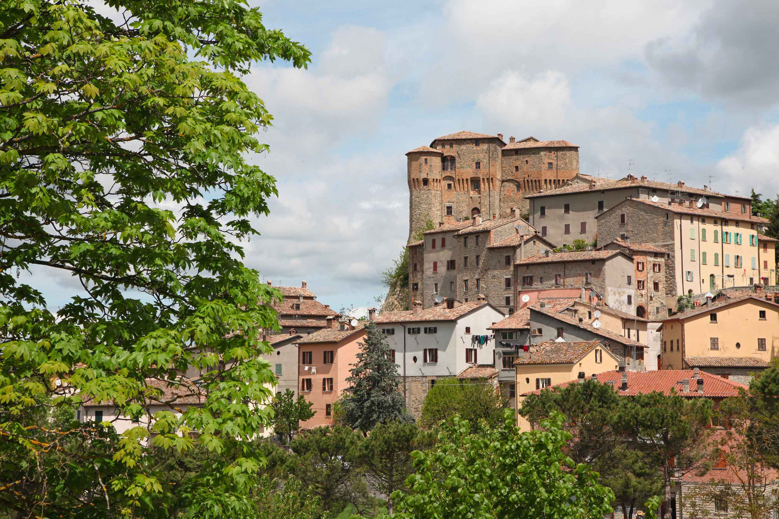 Truffle Italy Guide