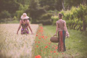 [ParlamiditER] Festa di fine estate sui colli di Cesena
