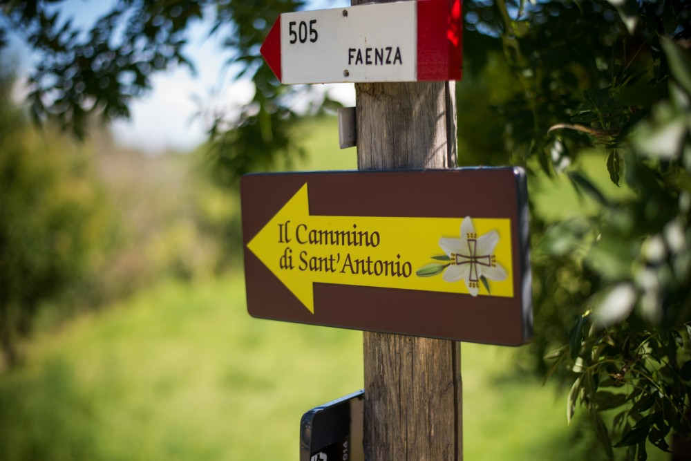 Cammino di Sant'Antonio | Foto © Giorgio Minguzzi