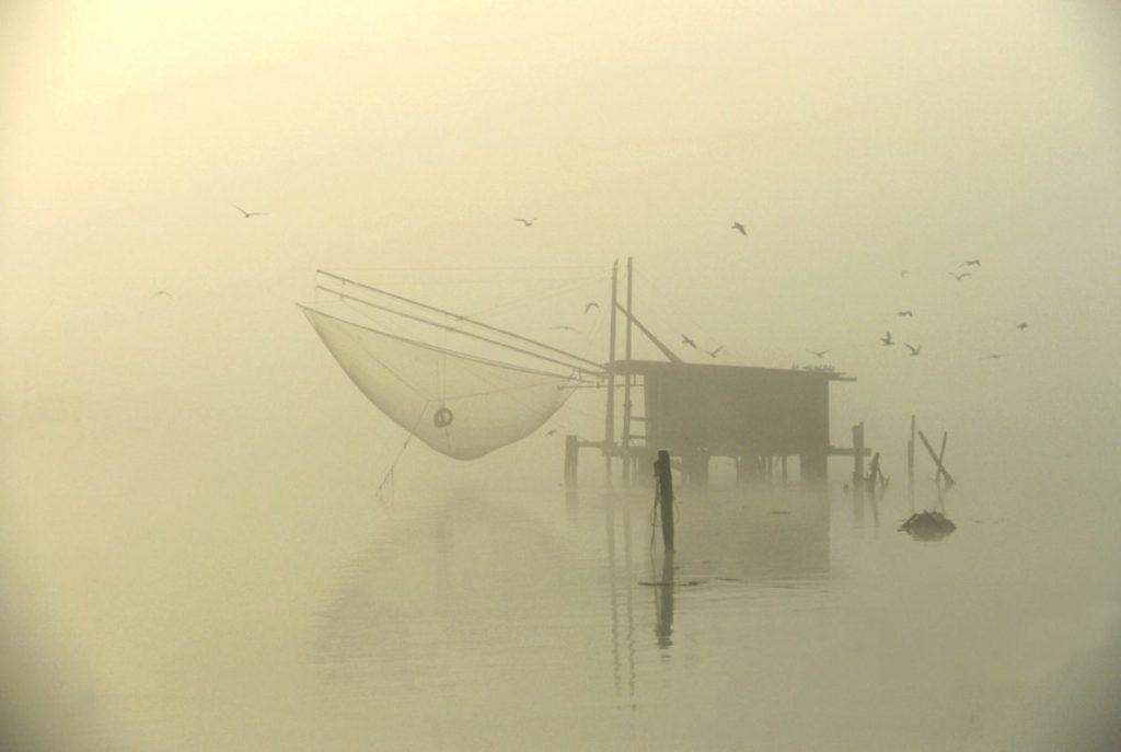 Fog – Ph Samaritani