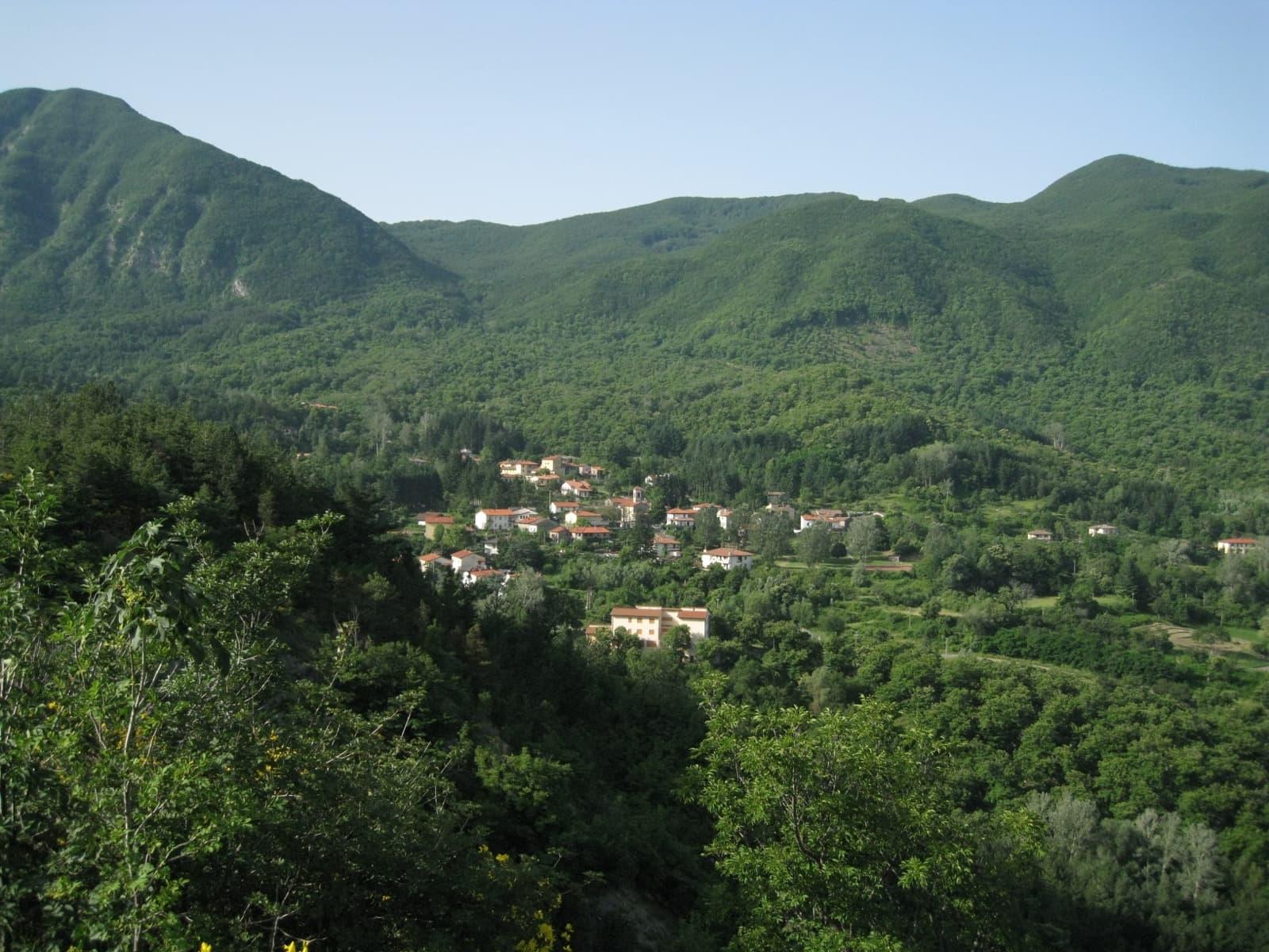 Castagno d'Andrea via parcoforestecasentinesi.it