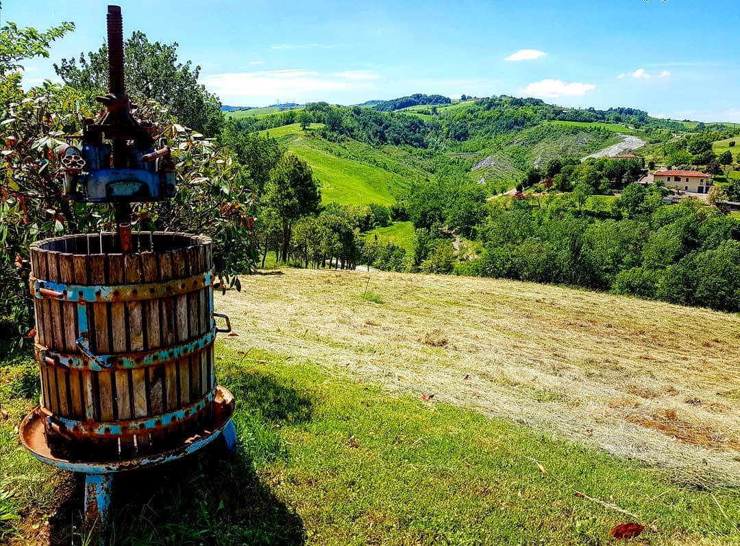 Castel San Pietro Terme Ph @chiari.mazzini