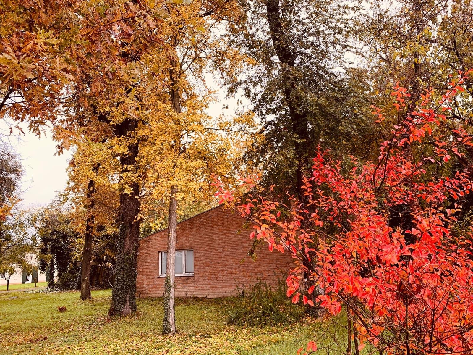 Centro Studi Dante Bighi
