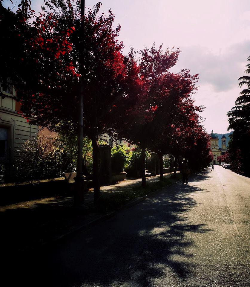Photo: Sara Camporesi