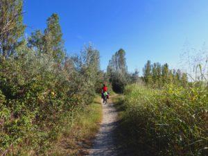 [Parlami di tER] Emilia Romagna in bicicletta