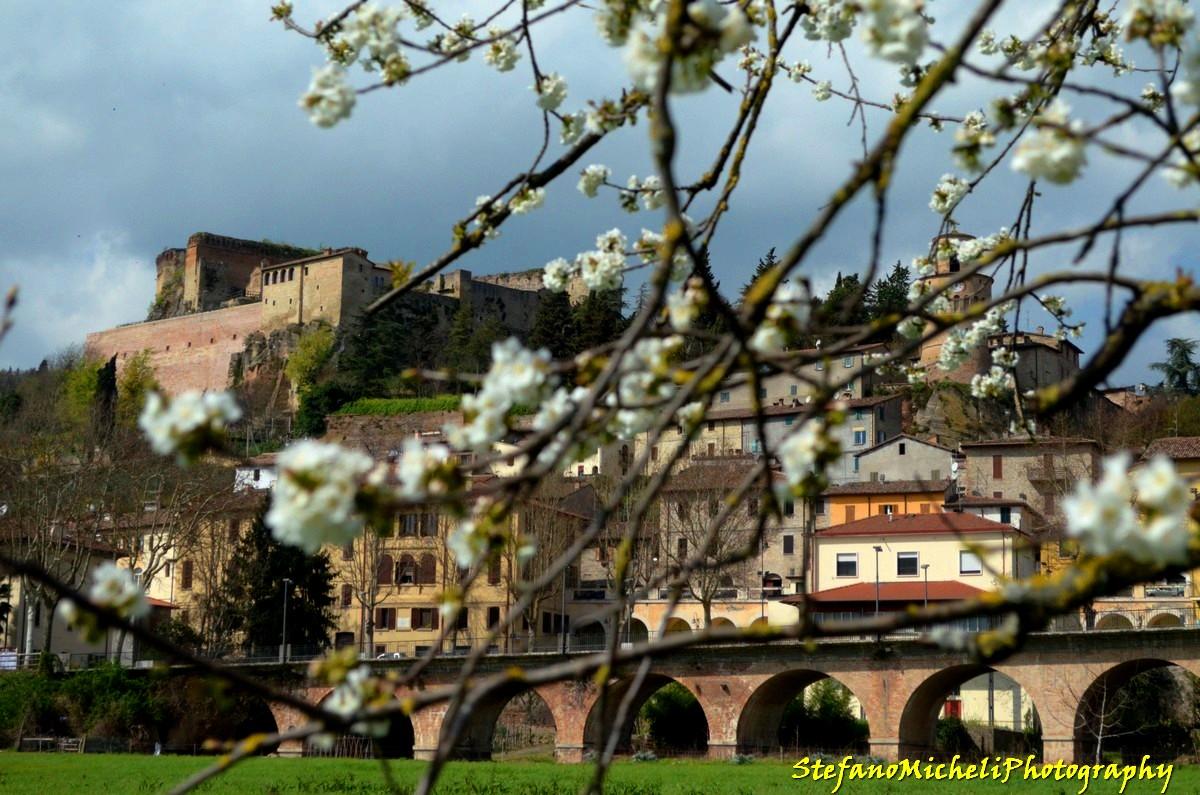 Emilia Romagna Borghi - unione dei comuni della romagna forlivese WLM2016,castrocaro_terme_e_terra_del_sol,rocca_di_castrocaro, ph.flash2803