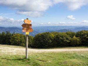Get active and take a break in Foreste Casentinesi, close to Florence