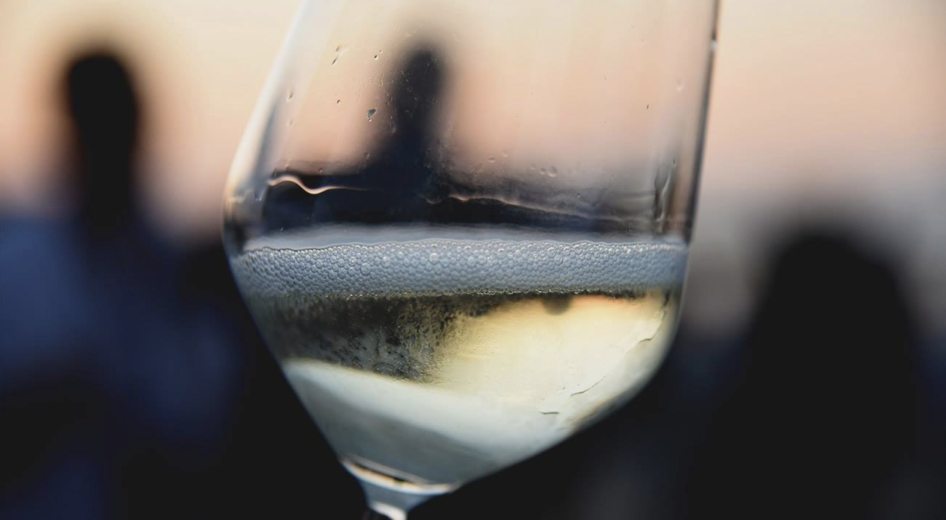 Tramonto DiVino 2019: wines and foods of Emilia-Romagna for tasting