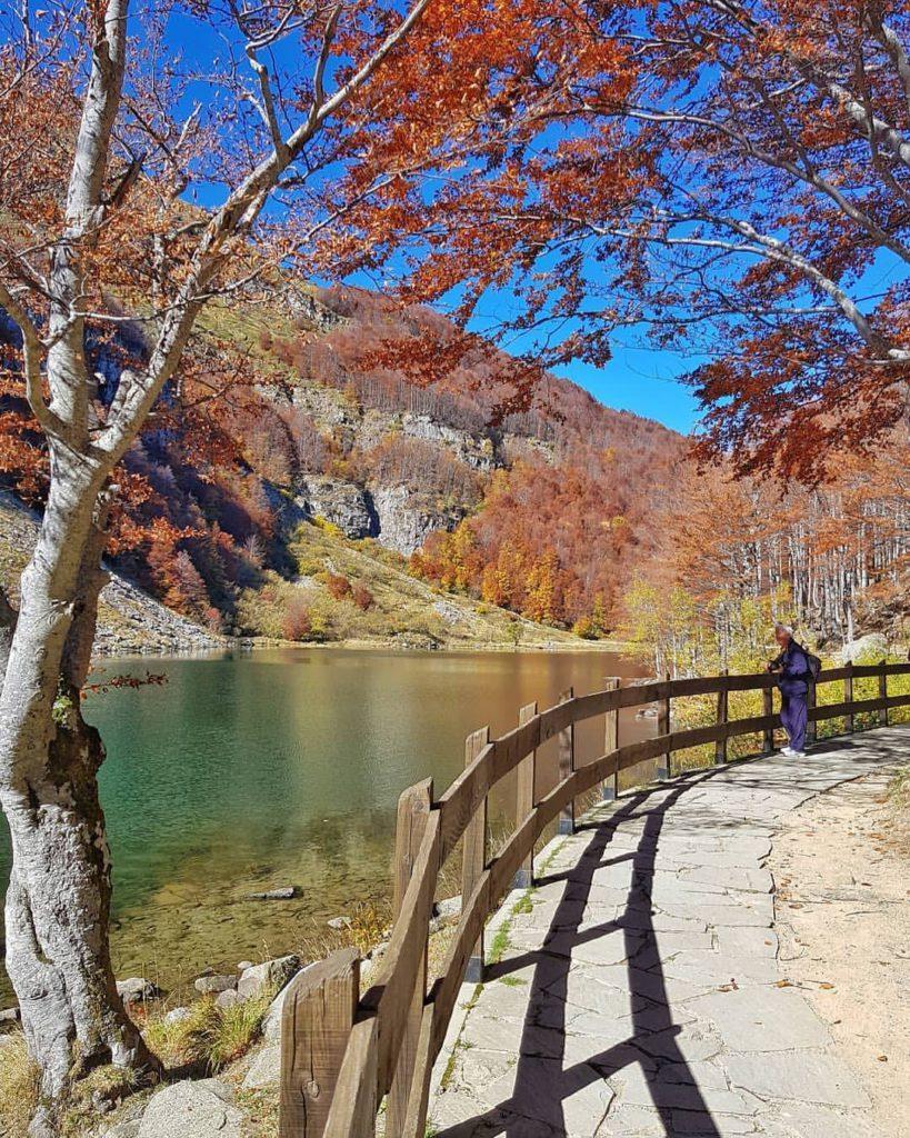 Fall Foliage, Parco Foreste Casentinesi-pievepelago-ph.-8mdm8