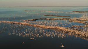 L'Autunno è Slow nel Parco del Delta del Po