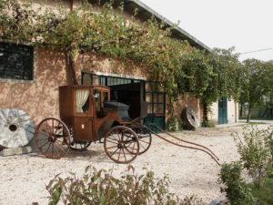 Musei del Mondo Rurale della Romagna