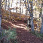 Cammino di Dante – La Foresta di Brisighella, Ph. Associazione Cammino Dante