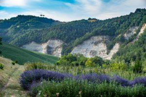 Alla scoperta degli Orti Botanici dell'Emilia Romagna