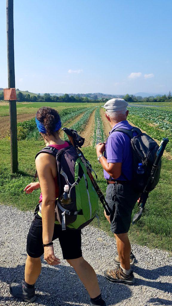 I Love Francigena – in cammino tra le colline, ph. Celestina Paglia