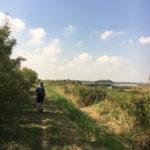 SocialTrek Via Romea Germanica, Oasi Campotto – Ph. Walter Manni