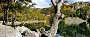 The Tuscan-Emilian Apennine National Park