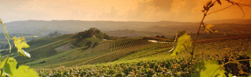 Vini dell'Emilia