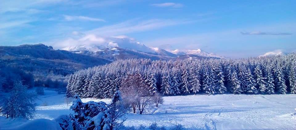 Snowshoeing in Emilia Romagna - Parma Apennines