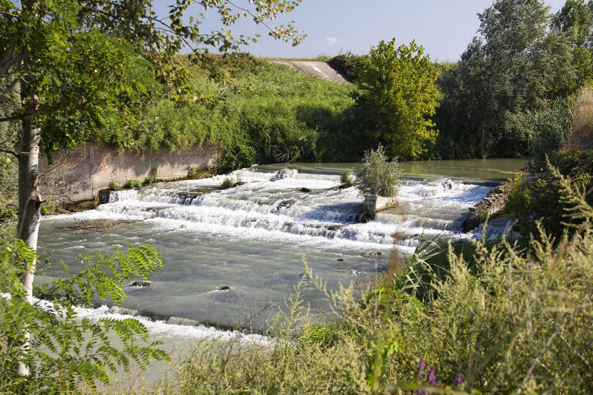 Along the Lamone River | Muraglione waterfalls (Bagnacavallo)