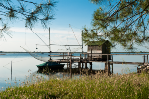 The Wonders of Nature: 5 places in Ravenna not to miss