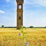 Molinella (BO), campanile dell'antico villaggio di Durazzo, ph. @alberta.58